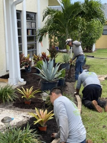 Affordable Landscaping in Boca Raton Yards Plus