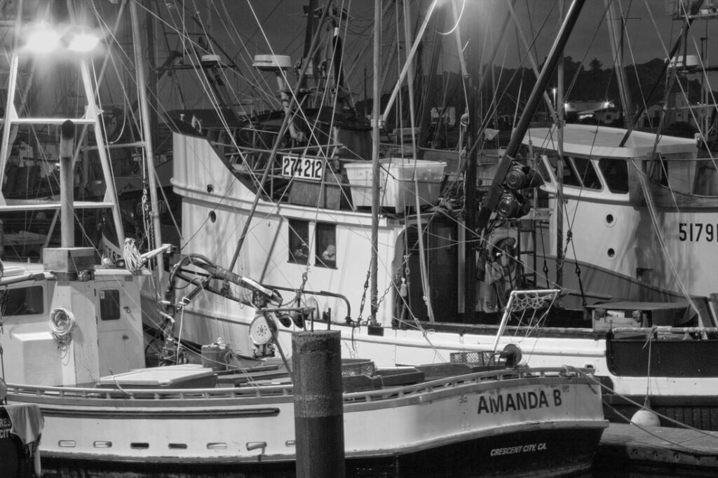 Crescent City Harbor Boats