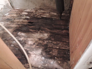 Oh yeah, floor damage
