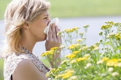 Seasonal Allergies Chiropractor