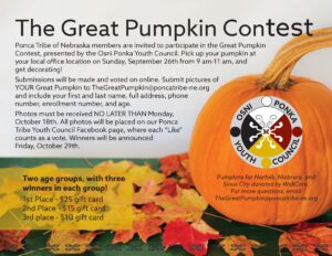 Read more about the article The Great Pumpkin Contest