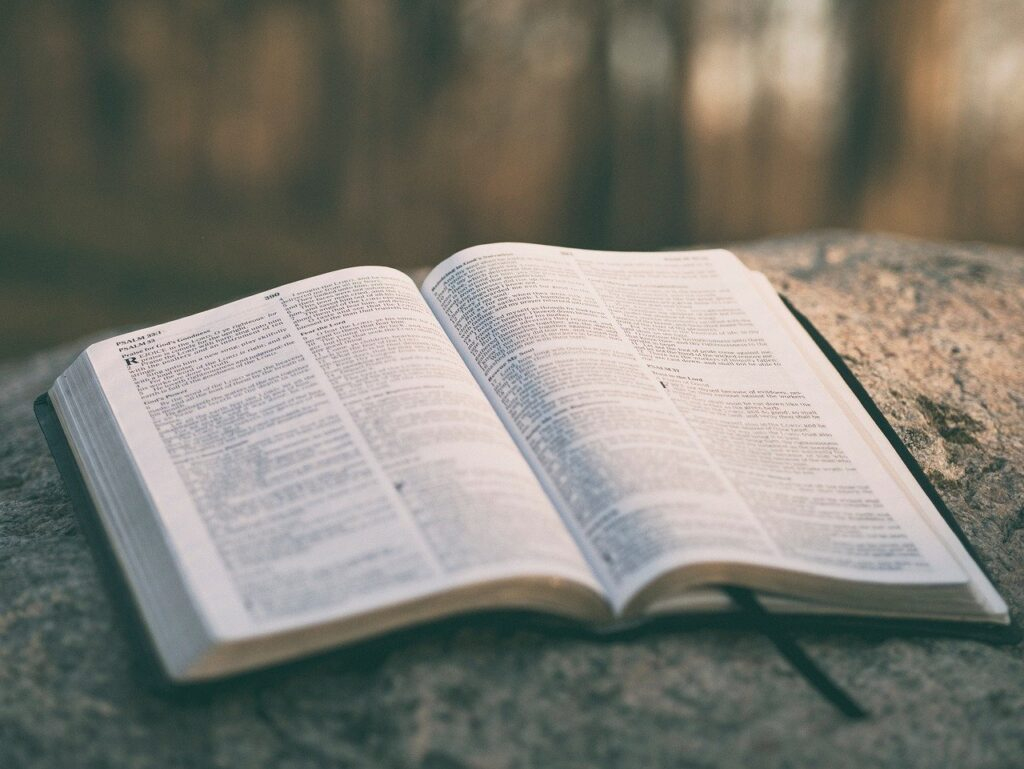 holy, book, bible
