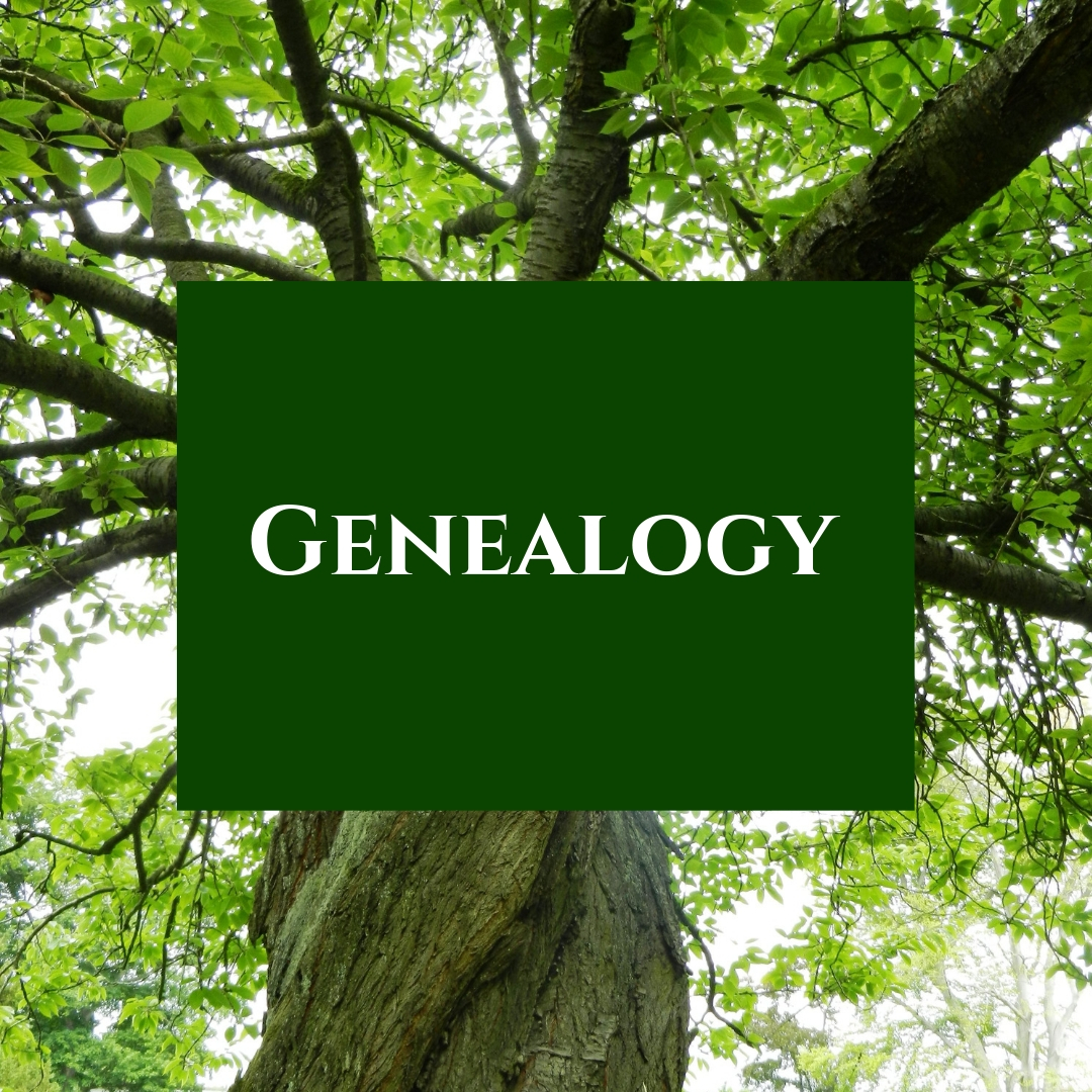 Local history and genealogy records.