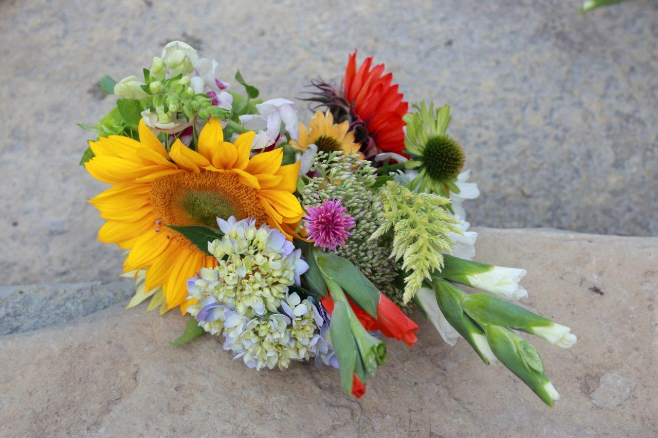bouquet of freshly picked flowers in yellow, red, pink and white