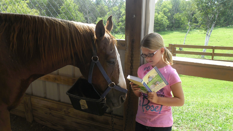 br-read-to-your-horse