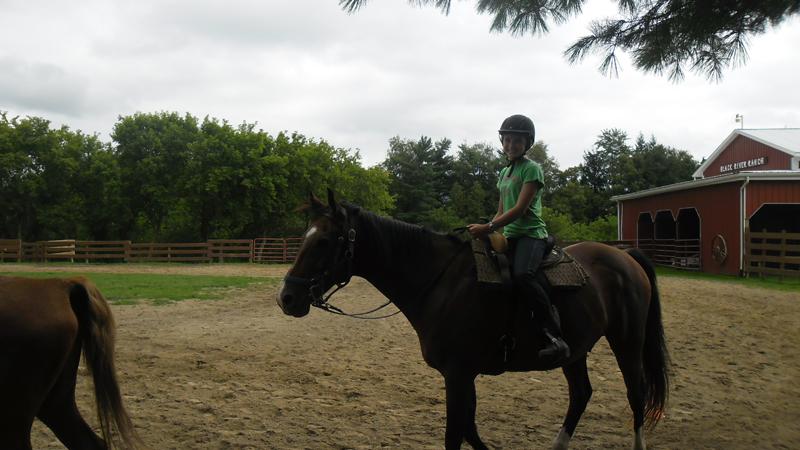 br-riding-saddle-66