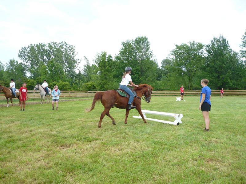 Ridding Saddle Jump