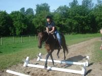 Riding Cavaletti