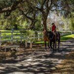 5 Dream Homes for Equestrian Enthusiasts