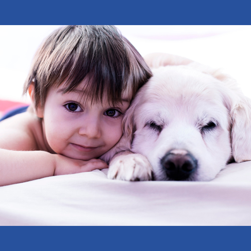 10_Safety_Tips_For_Children_Who_Live_With_Dogs