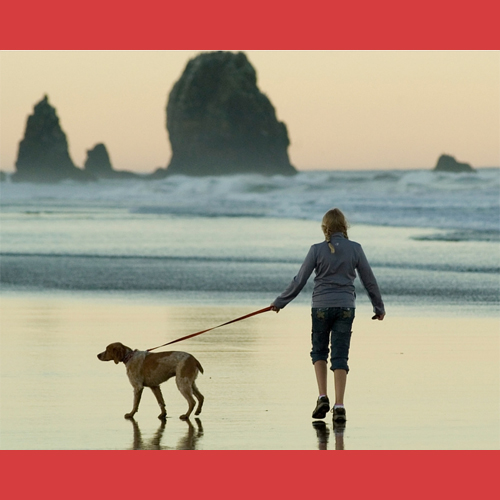5_Tips_For_Keeping_Your_Dog_Cool_This_Summer_Walk_At_Cooler_Times