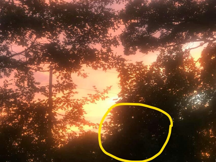 photo of sunset with a ghost in the forefront