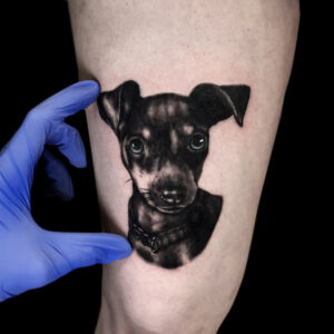 best dog portrait in Northridge Kyle DeVries