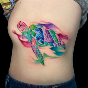 Spencer Watercolor Turtle