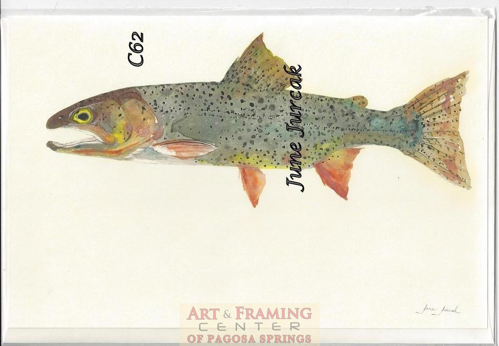 Scan0006 brook trout c62