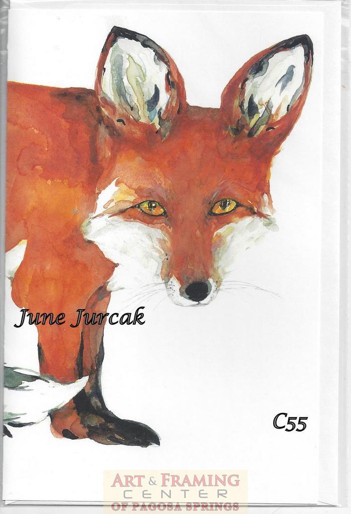 Scan0014 fox c55