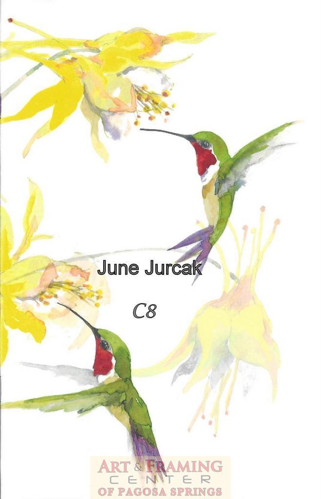 yellow Columbine and hummingbirds