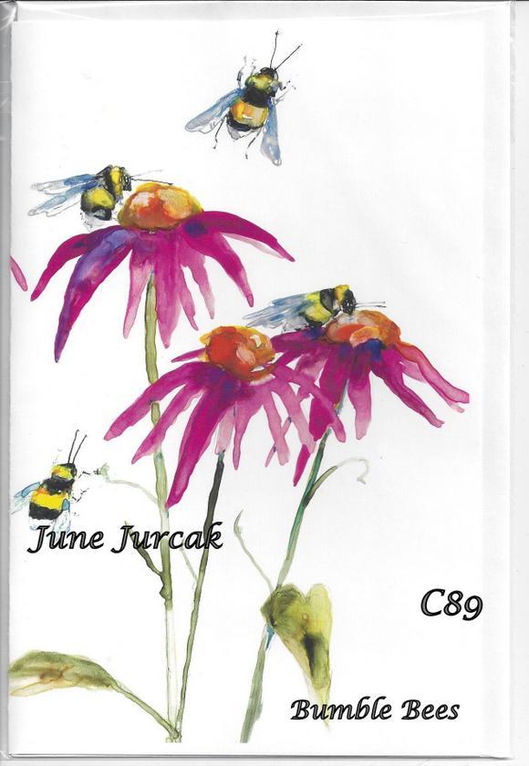 Scan0012 c89 echinacea honeybees
