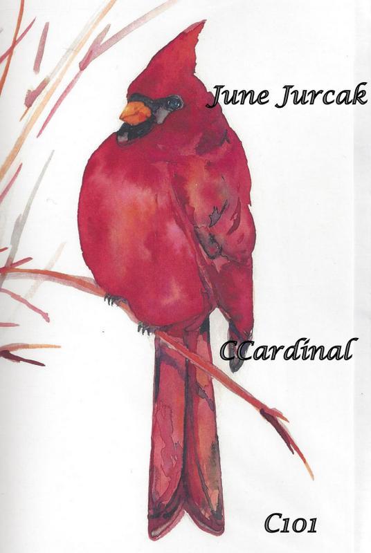 Ccardinal