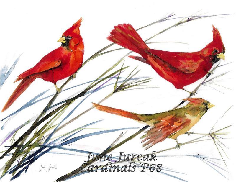 jj2016-16 p68 cardinals