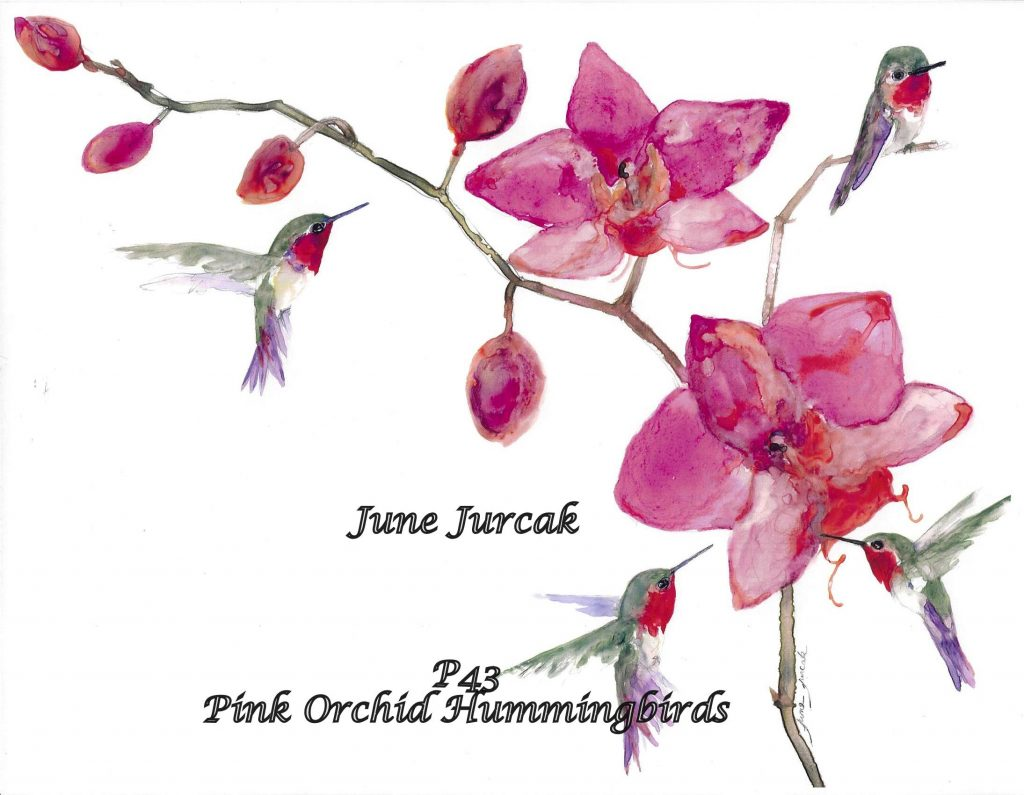 P43 Pink Orchid Hummingbirds