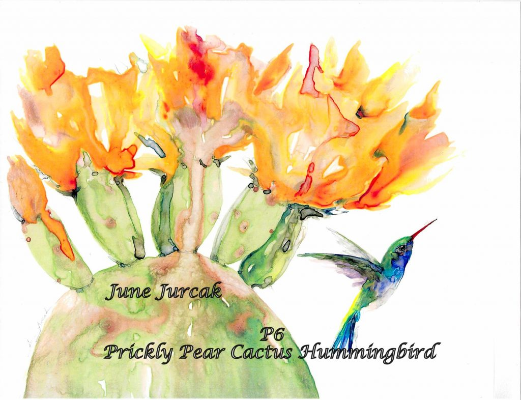 P6 Prickly Pear Cactus Hummer