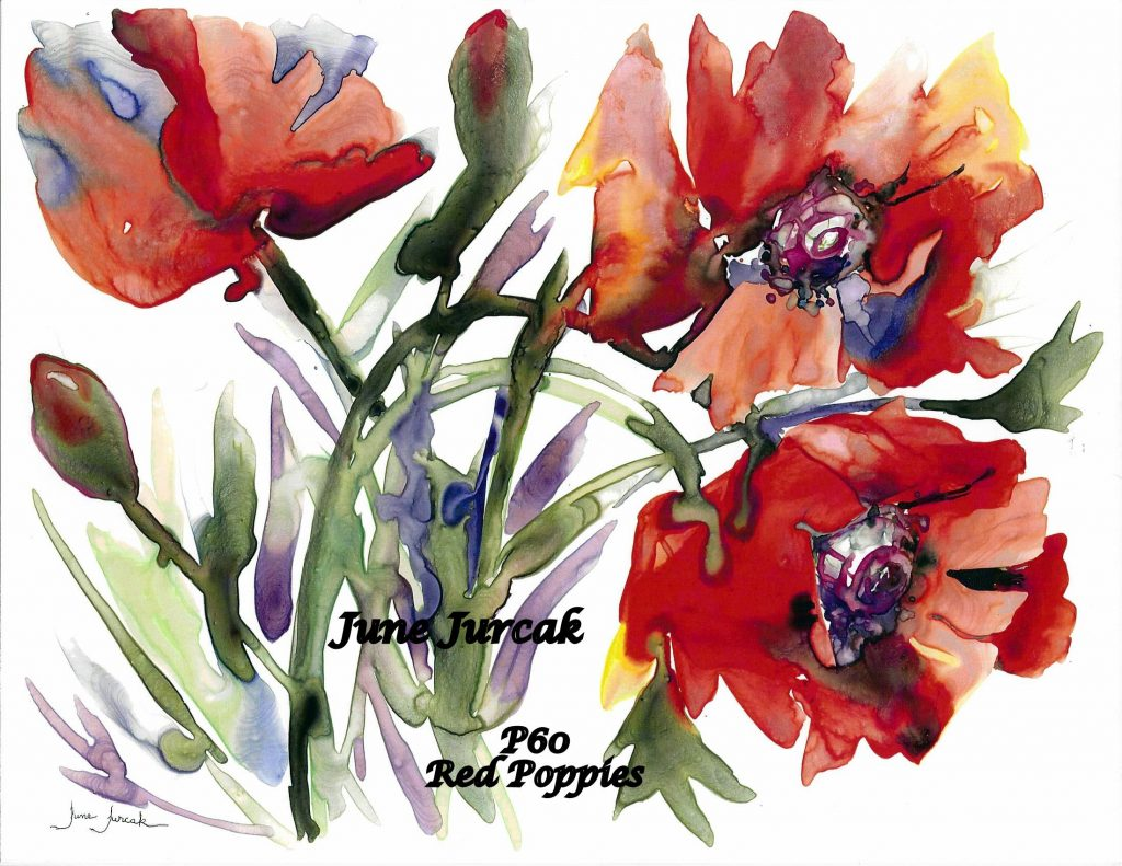 P60Red Poppies