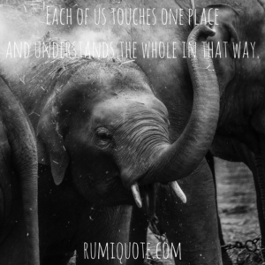 Rumi elephant in the dark poem quote meaning