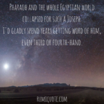 Rumi red shirt poem quote meaning