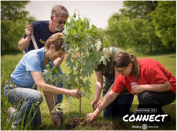 Rotary Members Plant Trees