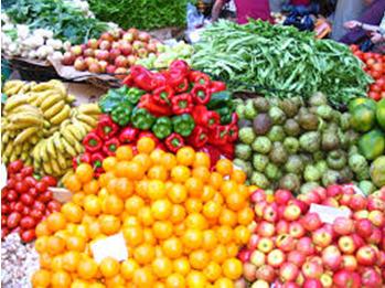 Farmers Market in Aitkin, MN