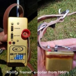 History or Remote Collar Training