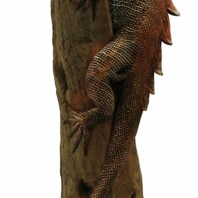 "13"" Hand Sculpted Green Iguana on Teak Log"