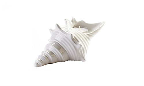 "7"" SPIKY Shell Candle Holder"