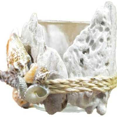 "Seashell and Drift Wood Tea Light Candle Holder 3""h"