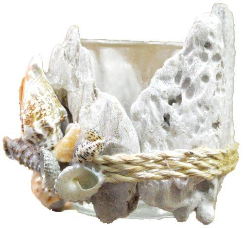 "Seashell and Drift Wood Tea Light Candle Holder 3""h"