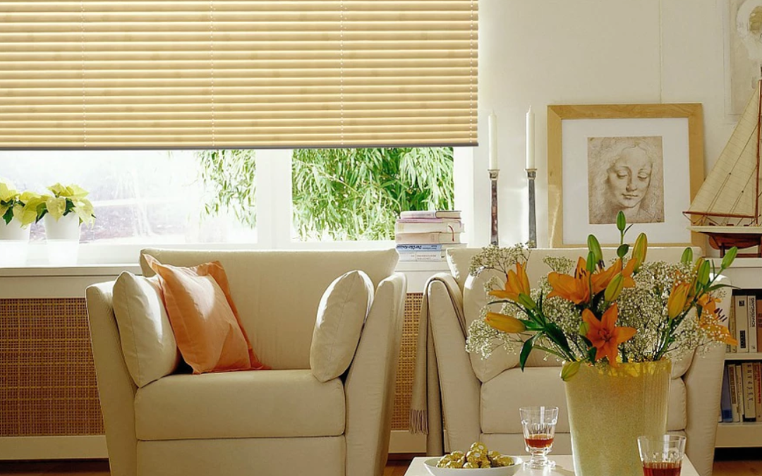 Everything You Need to Know About QMotion's Motorized Shading