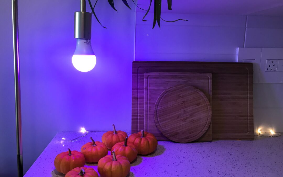 The Halloween Accessory that Will Take Your Decor to the Next Level