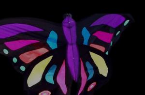 jesses-butterfly-300x196