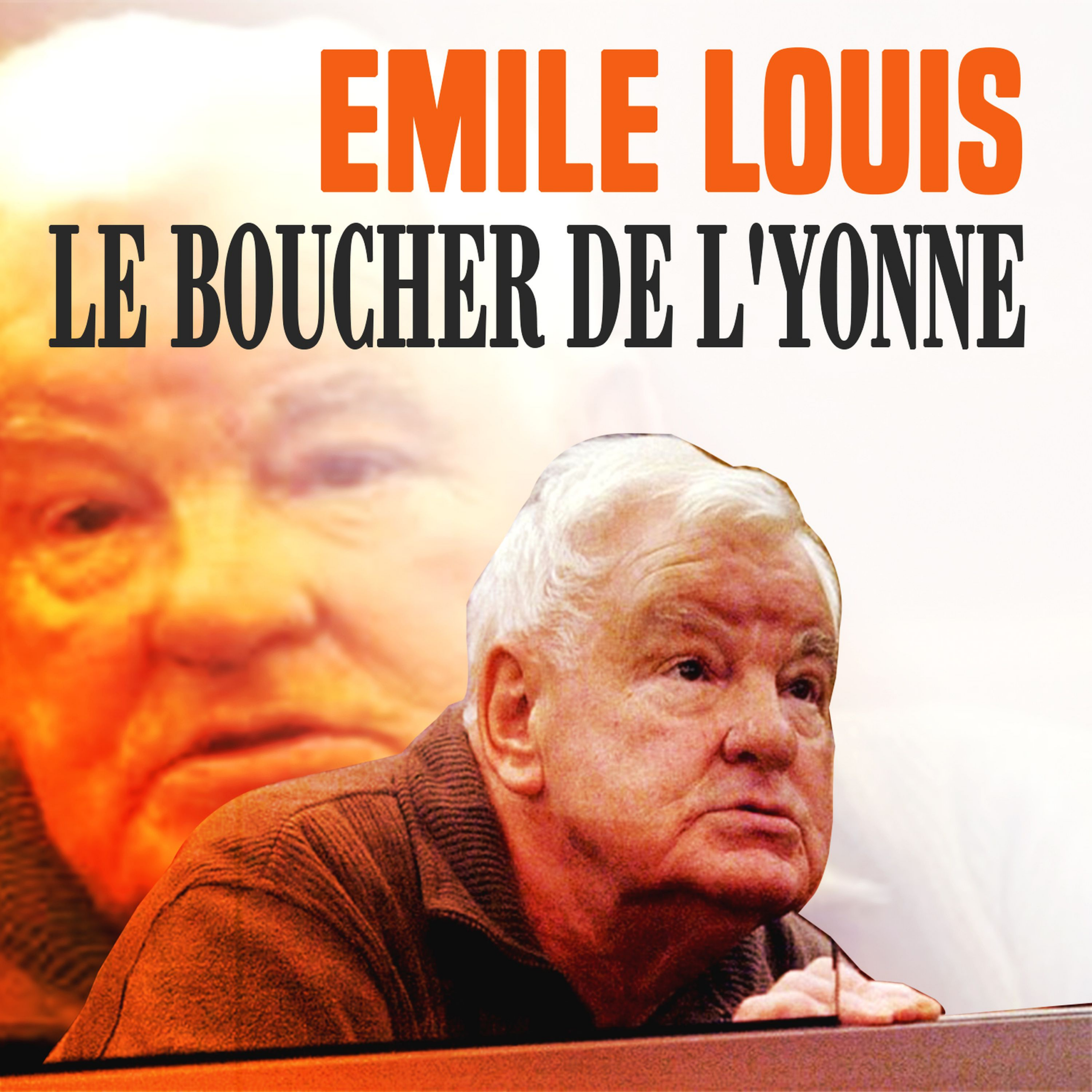 Émile Louis : l'affaire des « disparues de l'Yonne »