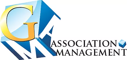 AM GOLDMAN Association Management & Consulting