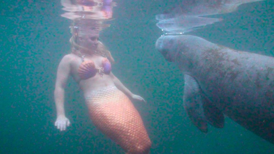 mermaid melissa manatee orange tail video