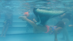 mermaid underwater sighting tail