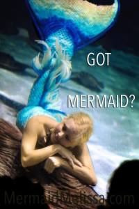 got mermaid quote mermaid pictures images mermaid melissa