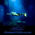 mermaid at night atlantis resort