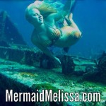 mermaid shipwreck dive sighting Bahamas