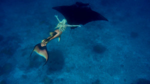 mermaid-melissa-manta-ray-flying-australia