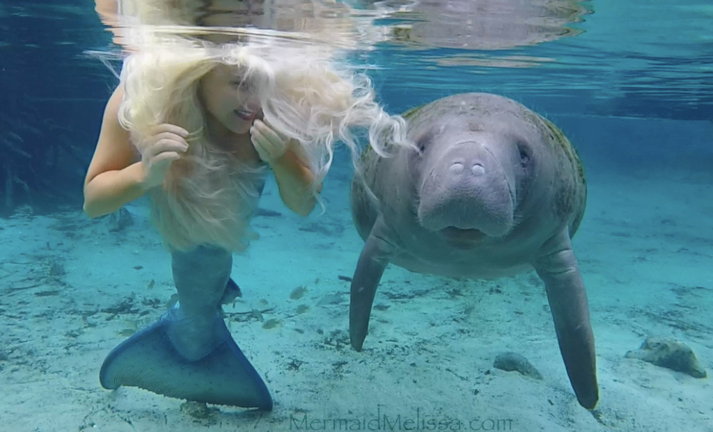 mermaid melissa manatee smile video