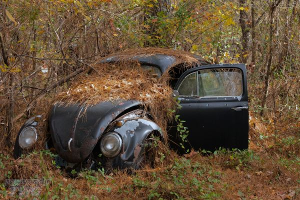How to sell a junk car for cash without hassles | Cash for Junk Cars