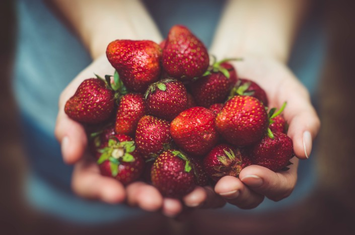 hands holding out a handful of strawberries